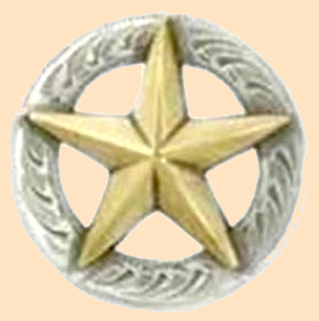 3-D Texas Star Concho