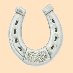 horseshoe concho