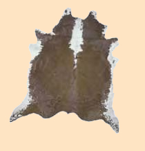 brown, white hair on cowhide, cowhide rug hair-on cow hide