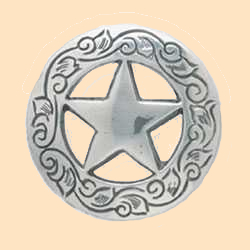 Texas star